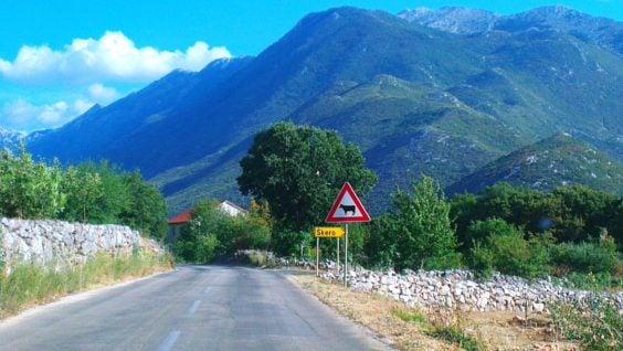 Autem do Chorwacji, za granicę, podróż za jeden uśmiech, podróżnik