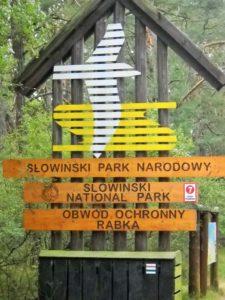Słowiński Park Narodowy, Łeba, Łeba wydmy