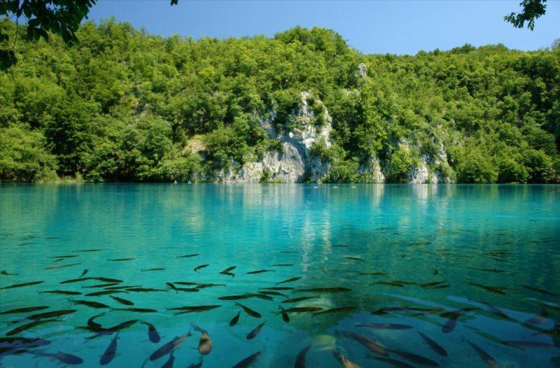 Jezioro Kozjak Park Narodowy Jezior Plitwickich