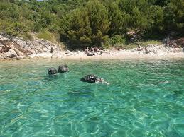 Green Sea Safari Dubrovnik