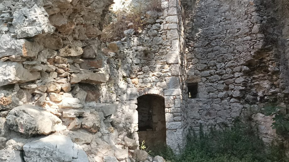 Osljak
